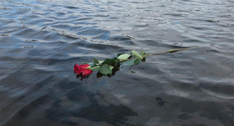 A Birmingham UK rowing club member threw the rose into the water for the woman's husband.