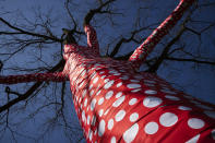 """The sculpture """"Ascension of Polka Dots on the Trees"""" by Japanese artist Yayoi Kusama is on display at the New York Botanical Garden, Thursday, April 8, 2021 in the Bronx borough of New York. The expansive exhibit has opened, and ticket sales have been brisk in a pandemic-weary city hungry for more outdoor cultural events. (AP Photo/Mark Lennihan)"""
