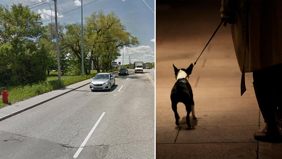 A woman tried to tell police she was walking a dog, when she had her husband on a leash, after curfew in Quebec. Source: Google Maps/Getty Images