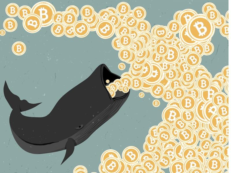 Bitcoin investors are not really driving the price higher but rather whales are buying low and forcing a short squeeze, just as suspected. | Source: Shutterstock