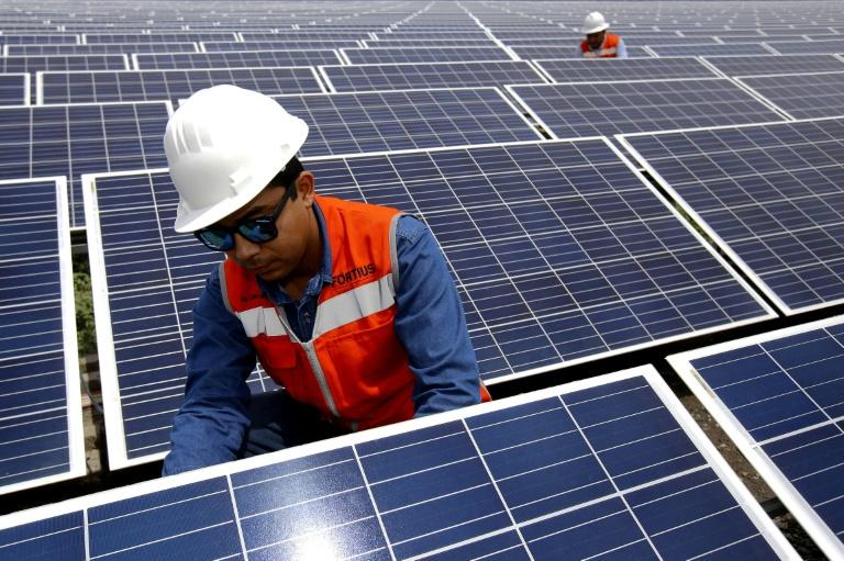 The cost of electricity produced by solar panels has fallen by more than 80 percent since 2010 (AFP Photo/ULISES RUIZ)