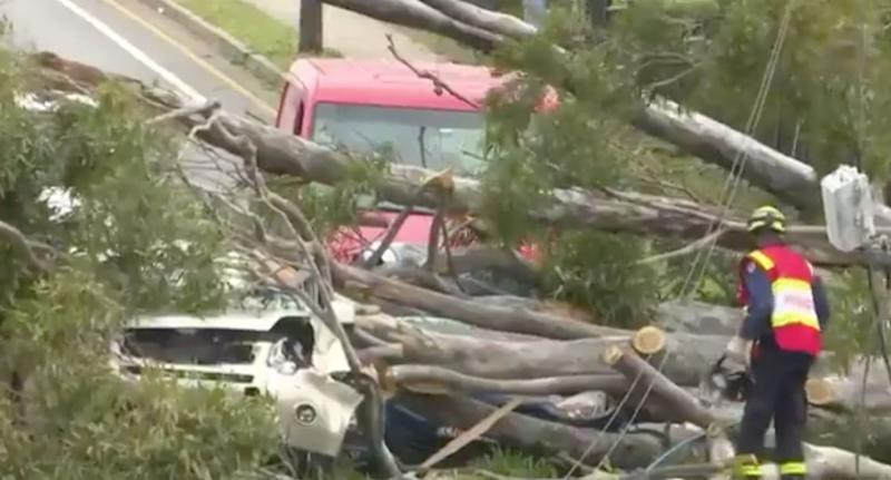 One vehicle could barely be seen beneath the debris. Source: Nine News