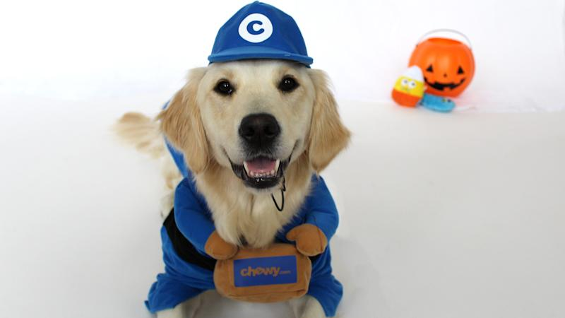 Who wouldn't be happy to see this adorable delivery driver?