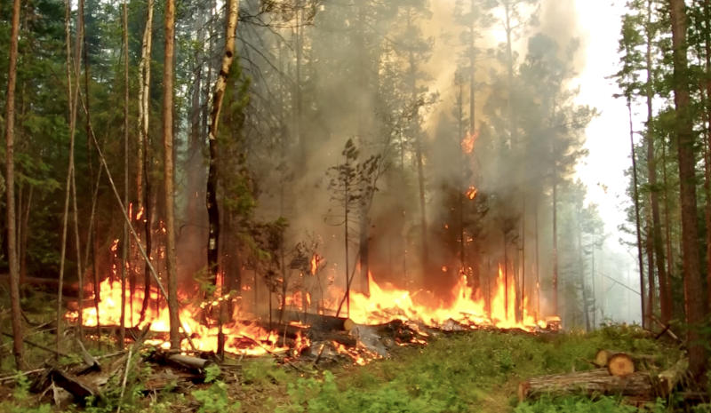 This photo taken from a footage provided by the RU-RTR Russian television, shows a forest fire in the republic of Sakha Republic, eastern Russia, on Wednesday, July 15, 2020. The region's capital Yakutsk has been covered in thick smog from the nearby fires, threatening residents with respiratory and cardiovascular problems.An estimated 106 wildfires are currently raging in the republic. (RU-RTR Russian Television via AP)