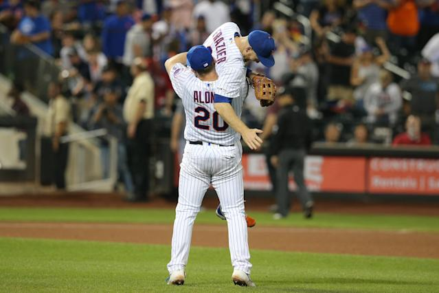 Could a talented Mets team win it all without having to pass the tests of endurance and consistency that often fell their rosters? (Photo by Brad Penner-USA TODAY Sports)
