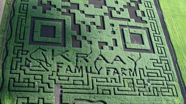 Corn Maze Becomes World's Largest QR Code (ABC News)