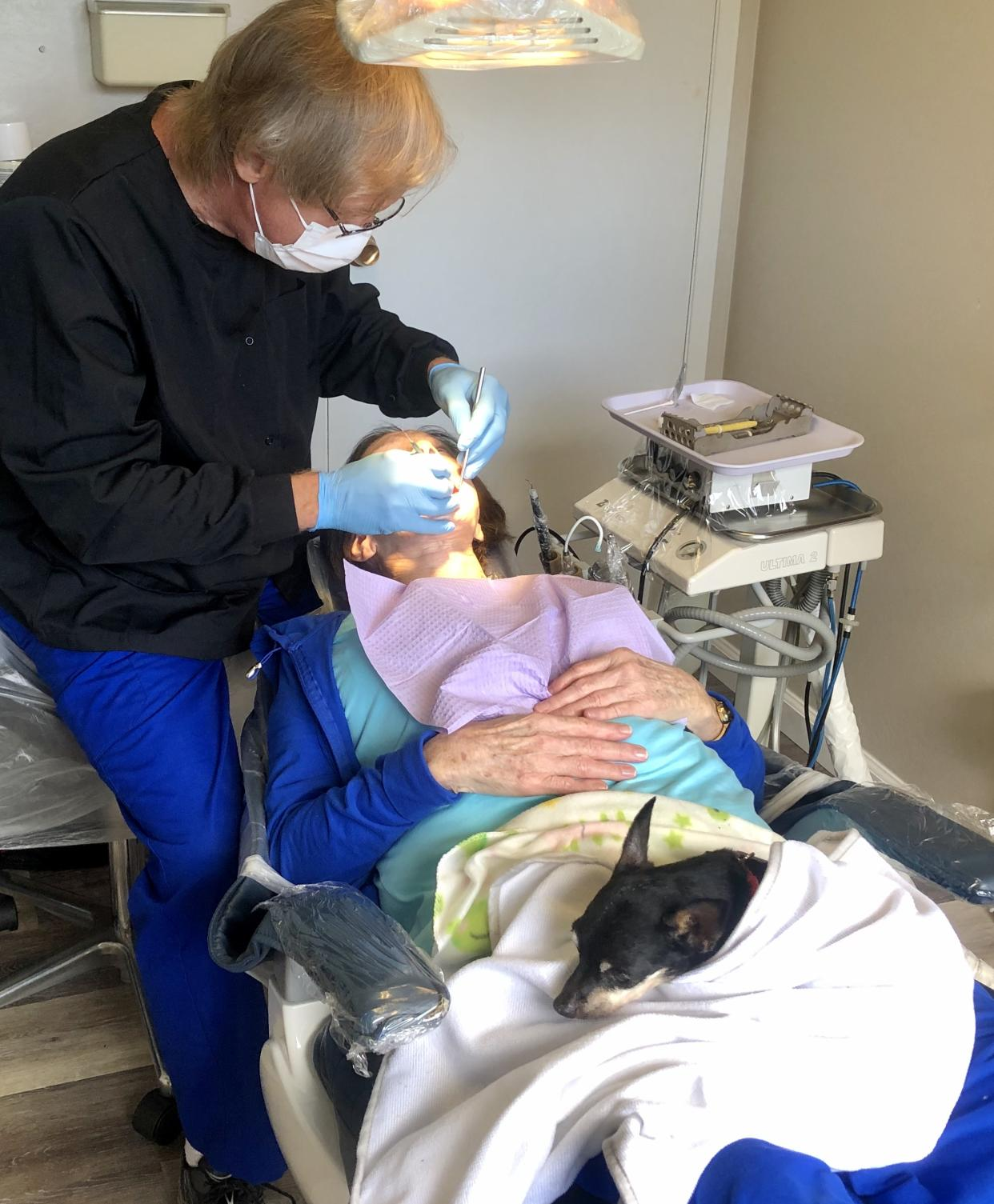 Kismet rests on a patient's lap during a dental exam.