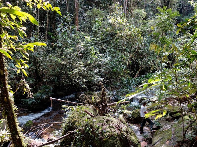 Colombia is the second most biodiverse nation in the world