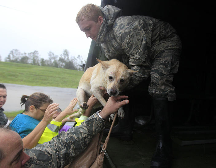 People and a dog who were rescued from their flooded homes are loaded into a Louisiana National Guard truck, after Hurricane Isaac made landfall and flooded homes with 10 feet of water in Braithwaite, La., in Plaquemines Parish Wednesday, Aug. 29, 2012. (AP Photo/Gerald Herbert)