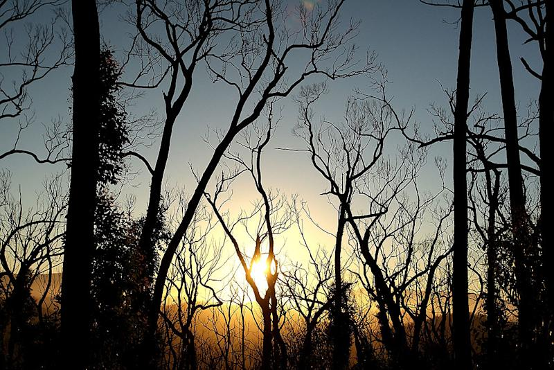"""On the one year anniversay of """"Black Saturday"""", Australia's worst ever bushfires and worst peace-time disaster, on February 7, 2010 in Marysville, Australia. The fires, of which there were onver 400 recorded, resulted in 173 confirmed deaths, and over 2000 homes destroyed, with entire towns badly damaged and some almost completely destroyed. Source: Getty"""