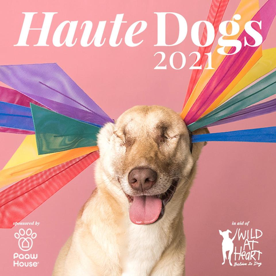 """<p>When Awon Golding, milliner to the stars (and Meghan Markle!) wanted to raise money to help pooches in need, she created the Haute Dogs calendar. Now in its third year, the 2021 edition features adorable rescue dogs wearing couture hats (in miniature!) by royal milliners Philip Treacy and Stephen Jones. </p> <p><strong>Buy it! Haute Dogs 2021 Calendar, $20; <a href=""""https://wildatheartfoundation.org/shop/haute-dogs-2021-calendar/"""" rel=""""nofollow noopener"""" target=""""_blank"""" data-ylk=""""slk:wildatheartfoundation.org"""" class=""""link rapid-noclick-resp"""">wildatheartfoundation.org</a></strong></p>"""