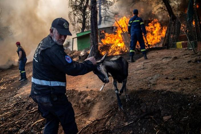 The destructive fire broke out in the early hours of Tuesday on Greece's second-largest island, prompting the evacuation of four villages including Platana (AFP Photo/ANGELOS TZORTZINIS)