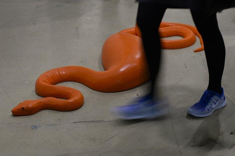 "Carsten Hoeller's ""Snake"" is pictured during an Art Basel preview on June 11, 2013. Some 65,000 visitors are expected to come to Art Basel this year to see exhibits by a lucky 304 galleries"