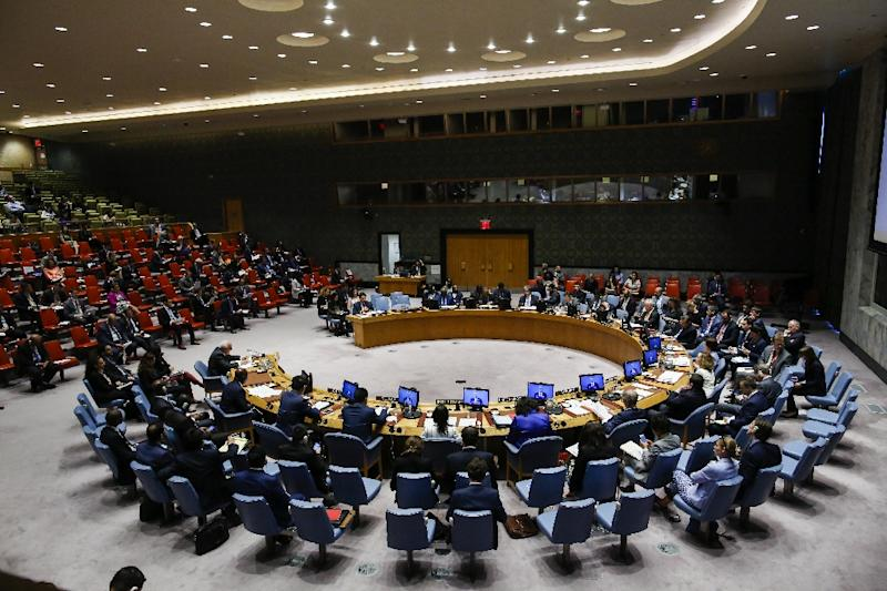 The United Nations Security Council convened to discuss the violence, following a US request for an urgent meeting (AFP Photo/EDUARDO MUNOZ ALVAREZ)