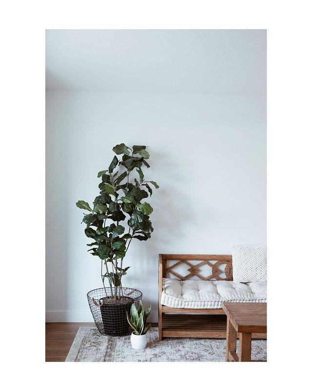 """<p>House of Kato is an online houseplant store based in West London, which delivers all over the UK. Their slogan, """"artful Minimalism inspired by Nature"""" makes us want to throw out all of our belongings and replace them with trees. Anyone else?</p><p><a class=""""link rapid-noclick-resp"""" href=""""https://www.houseofkato.com/"""" rel=""""nofollow noopener"""" target=""""_blank"""" data-ylk=""""slk:SHOP NOW"""">SHOP NOW</a></p><p><a href=""""https://www.instagram.com/p/CDMIYdgDrq9/?utm_source=ig_embed&utm_campaign=loading"""" rel=""""nofollow noopener"""" target=""""_blank"""" data-ylk=""""slk:See the original post on Instagram"""" class=""""link rapid-noclick-resp"""">See the original post on Instagram</a></p>"""
