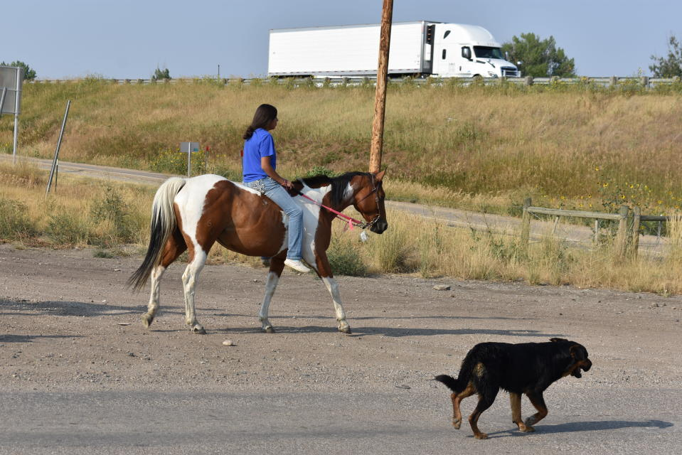 A girl rides a horse near a highway accompanied by a dog on the Crow Indian Reservation in Crow Agency, Mont. on Wednesday, Aug. 26, 2020. This year's U.S. Census is expected to undercount Native Americans on many of the nation's more than 300 reservations.(AP Photo/Matthew Brown)
