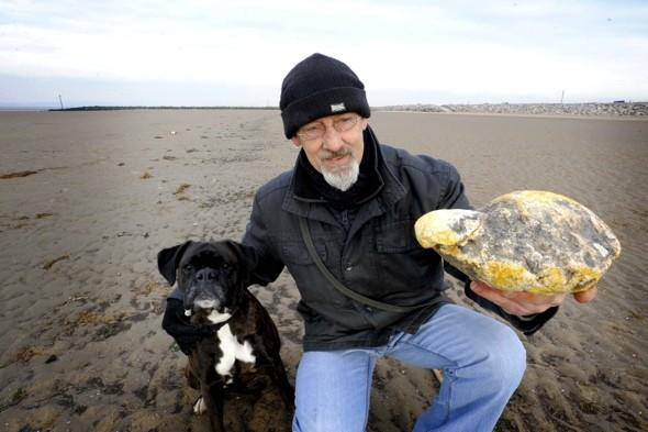 Man who found 'whale vomit worth £100k' finds out it's worthless