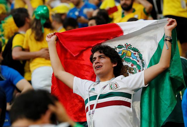 <p>Mexico fan looks dejected after the match REUTERS/Carlos Garcia Rawlins </p>