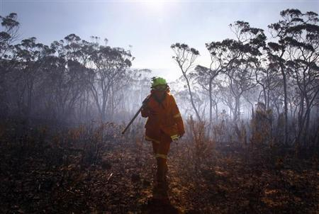 A female Rural Fire Service (RFS) firefighter walks through a burnt area after trying to extinguish a small fire approaching homes near the Blue Mountains suburb of Blackheath, located around 70 km (43 miles) west of Sydney, October 23, 2013. REUTERS/David Gray
