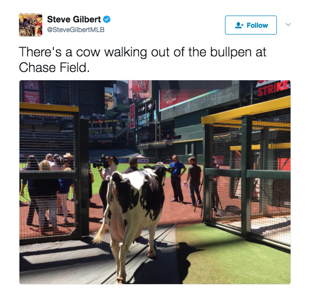 Well, that's not something you see every day. (Screenshot via @SteveGilbertMLB)
