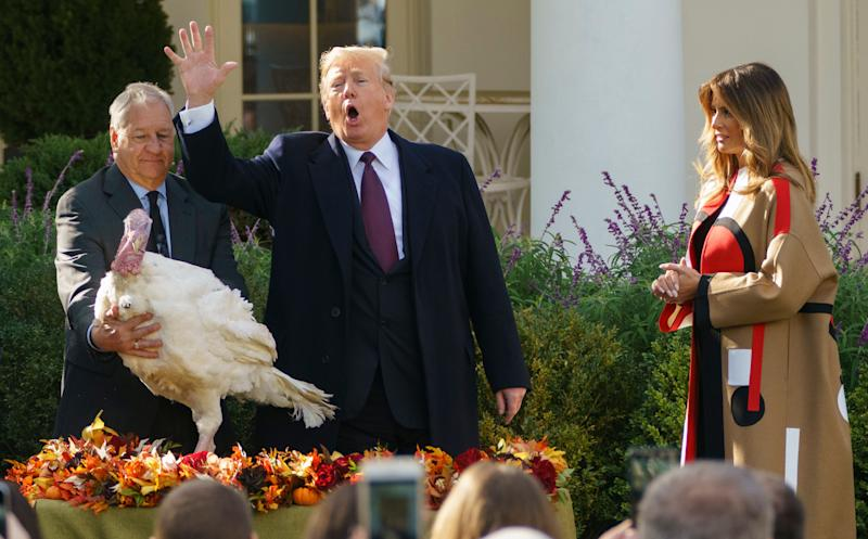 President Donald Trump pardons Peas as he and first lady Melania Trump participate in a turkey-pardoning ceremony in the Rose Garden of the White House on Tuesday. (Photo: ASSOCIATED PRESS)
