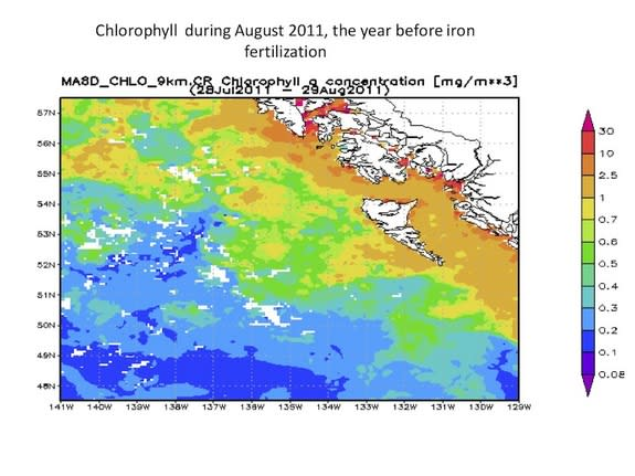 Chlorophyll levels off Canada's west coast in August, 2011, before the controversial fertilization project.