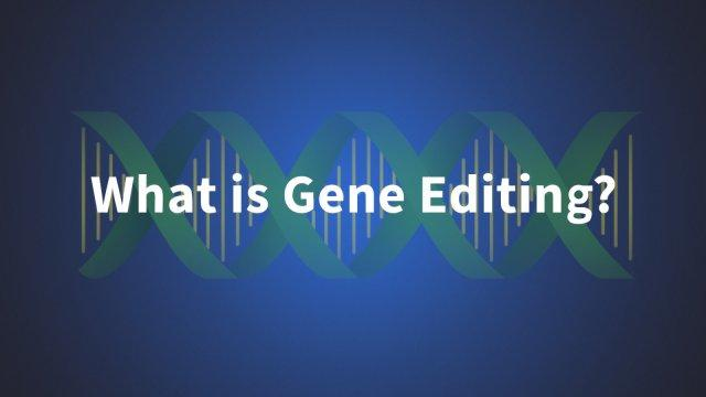 What Is Gene Editing?