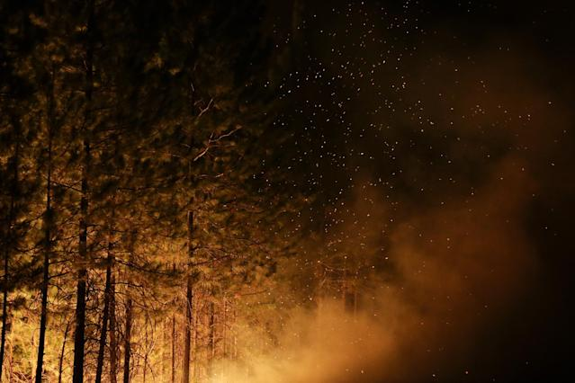 Embers from burning trees fill the air as firefighters continues to battle the Rim Fire near Yosemite National Park, Calif., on Sunday, Aug. 25, 2013. Fire crews are clearing brush and setting sprinklers to protect two groves of giant sequoias as a massive week-old wildfire rages along the remote northwest edge of Yosemite National Park. (AP Photo/Jae C. Hong)