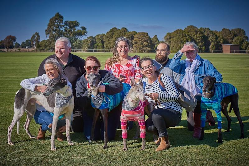 Four of the five greyhounds who left quarantine on Friday morning pictured with their foster carers.