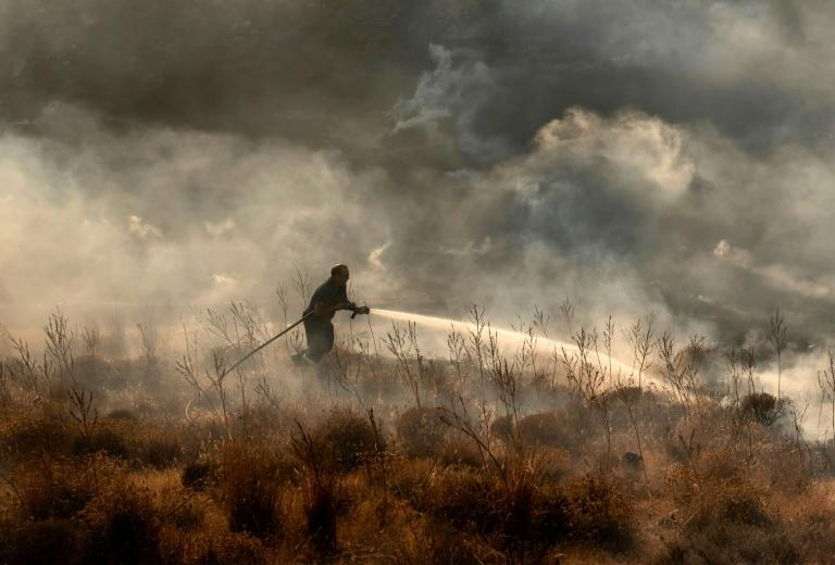 The fire in Cyprus destroyed 55 square kilometres (21 square miles) of forest and farmland, according to the forestry department