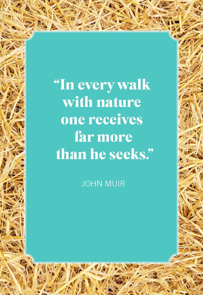 """<p>""""In every walk with nature one receives far more than he seeks.""""</p>"""