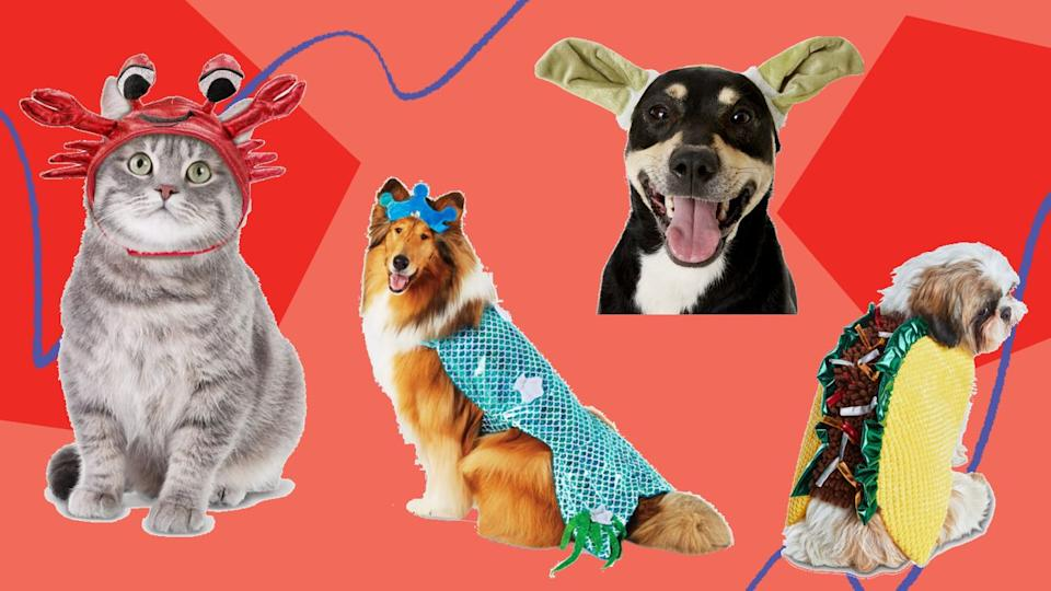 We found 2020's funniest Halloween costumes for dogs and cats from Chewy, Petco, Target, Amazon, Etsy and more. (Photo: HuffPost Finds)