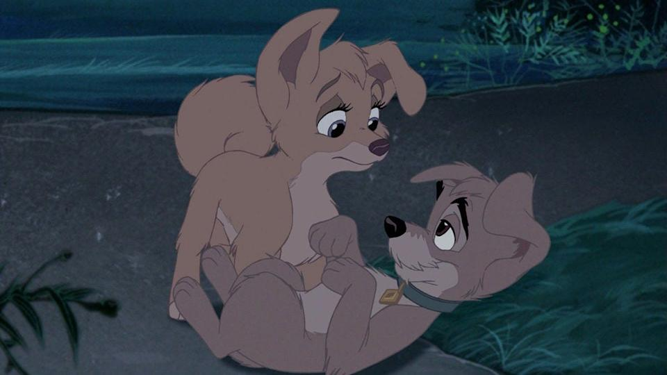 """Angel and Scamp in """"Lady and the Tramp II: Scamp's Adventure."""""""