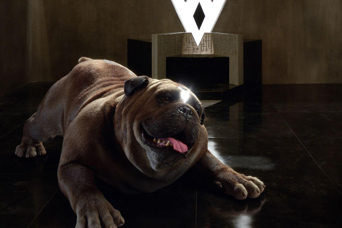 "<p><em>Inhumans </em>is rife with terrible CGI, but the biggest offender by far is this 2,000-pound teleporting doggie who whisks Black Bolt's friends and family from the moon to Hawaii and back again. A literally massive undertaking to bring to life, Lockjaw <a rel=""nofollow"" href=""https://www.yahoo.com/entertainment/marvels-inhumans-five-reasons-im-still-watching-180821333.html"">has only been an intermittent presence</a> since the first episode in order to save the production time and money. We still hope he finds a forever family after the show's almost inevitable cancellation. <em>— Ethan Alter</em><br />(Photo: Marvel Television) </p>"