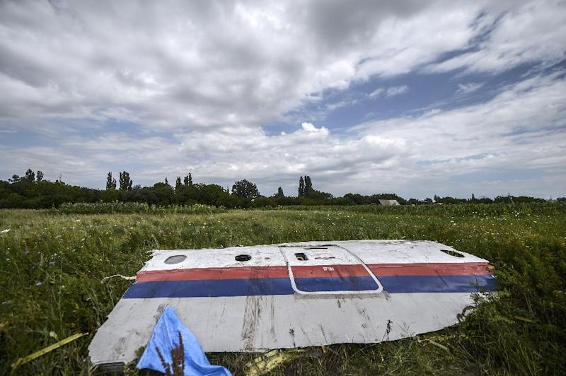 A piece of the wreckage of the Malaysia Airlines flight MH17 in a field near the village of Grabove on July 20, 2014