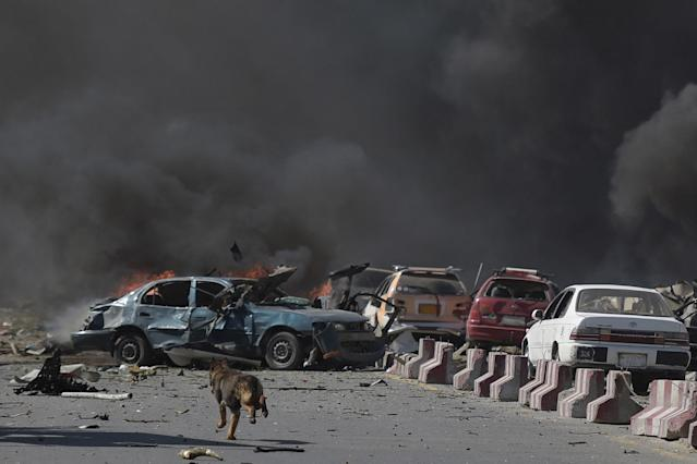 <p>A dog is seen running at the site of a car bomb attack in Kabul on May 31, 2017. (Shah Marai/AFP/Getty Images) </p>