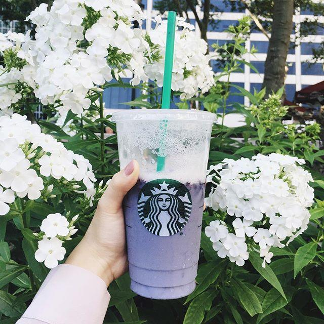 """<p><strong>Ingredients:</strong></p><p>5 oz. Iced Passion Tea</p><p>2 oz. Vanilla Soy Milk</p><p>1 oz. Simple Syrup</p><p>Blackberries</p><p>Ice</p><p><strong>Directions:</strong></p><p><u>To make the passion tea:</u> </p><p>Bring 32 oz. of water to a boil. Put the Iced Passion Tea bag in a 64 oz. pitcher and fill with boiling water. Let steep for about 5-7 minutes and remove the tea bag. Fill remaining 32 oz. with cold water to sit in the refrigerator overnight.</p><p><u>To make the simple syrup:</u> </p><p>Bring 1/2 cup of water to a boil and add in 1/2 cup of sugar to stir until dissolved. Remove from heat to let it cool.</p><p><u>To make the drink:</u> </p><p>Add ice to a cup and top with blackberries. Then pour in the passion tea, vanilla soy milk and simple syrup. <em><br></em></p><p><em>Recipe from</em> <a href=""""https://www.theculinarycompass.com/"""" rel=""""nofollow noopener"""" target=""""_blank"""" data-ylk=""""slk:The Culinary Compass."""" class=""""link rapid-noclick-resp"""">The Culinary Compass.</a></p><p><a href=""""https://www.instagram.com/p/BHQPWgsBPIt/"""" rel=""""nofollow noopener"""" target=""""_blank"""" data-ylk=""""slk:See the original post on Instagram"""" class=""""link rapid-noclick-resp"""">See the original post on Instagram</a></p>"""