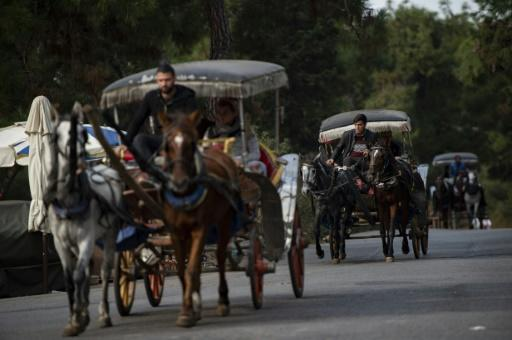 A popular excursion in Istanbul is a boat trip to one of the car-free Princes' Islands followed by a ride in a horse-drawn carriage