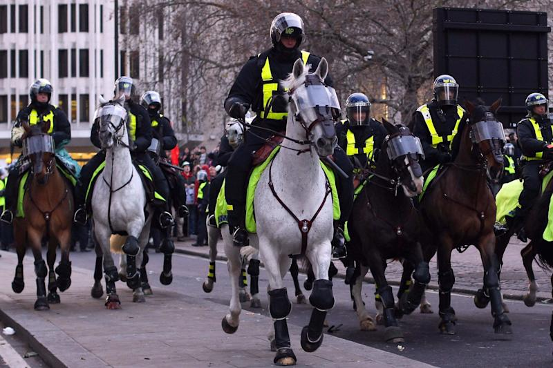 Felled: a police horse was brought down as officers tackled a crowd using hippy crack (file image): Dan Kitwood/Getty Images