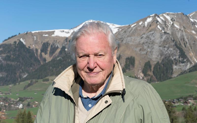 Sir David Attenborough - Credit: Ruth Peacey
