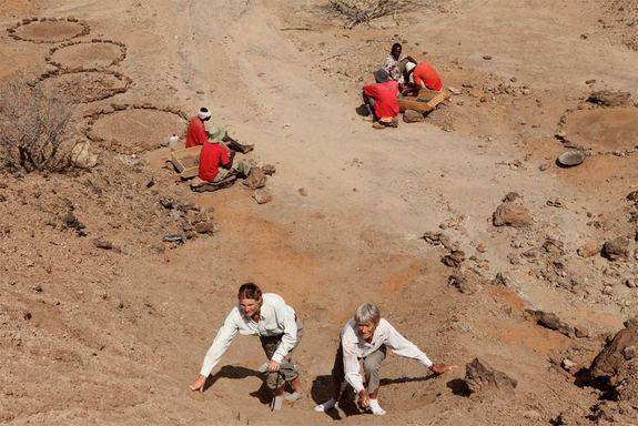 National Geographic Explorers-in-Residence Louise Leakey (left) and Meave Leakey search the slope in northern Kenya where KNM-ER 60000 was discovered while, in the background, members of the field crew screen the surface sediment hoping to find