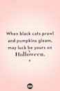 <p>When black cats prowl and pumpkins gleam, may luck be yours on Halloween.</p>