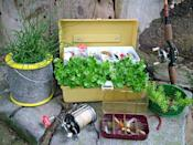 """<div class=""""caption-credit"""">Photo by: Nancy Ondra</div><div class=""""caption-title"""">Going Fishing</div>Turn a tackle box into a unique container. Display some lures in the upper tray or plant those sections too. Bait buckets, cricket cages, traps and fishing baskets also work well for holding plants."""