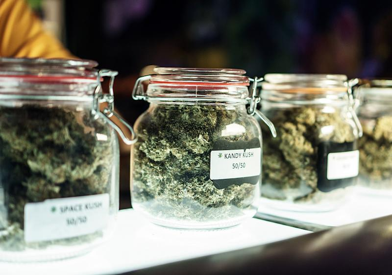 Clear labeled jars on a dispensary store counter that contain dried cannabis buds of various premium strains.