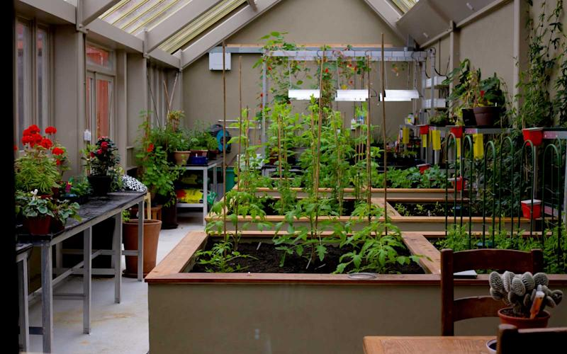 The estate has its own greenhouse where it grows herbs and items used in cooking. | Talia Avakian