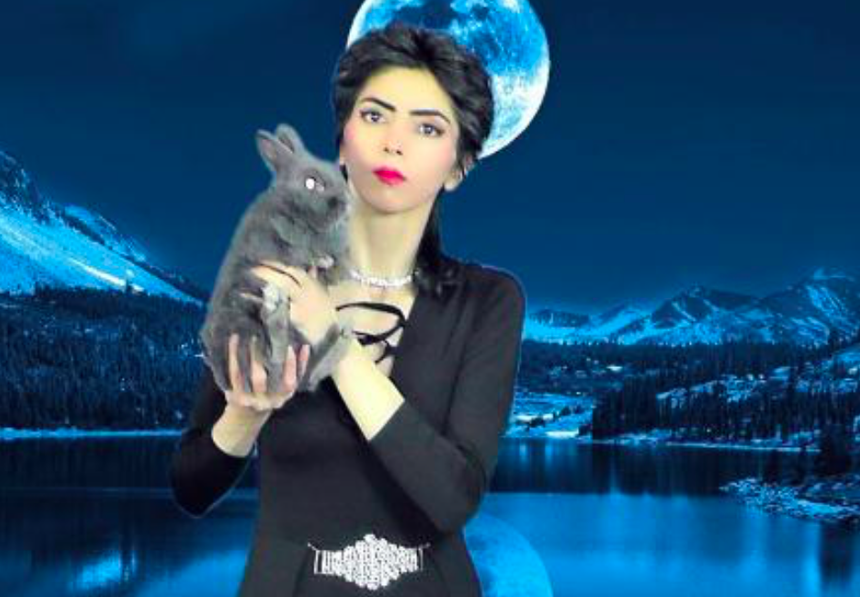 <em>Animal rights activist Aghdam complained that her YouTube videos were being hidden and de-monetised (nasimesabz.com)</em>