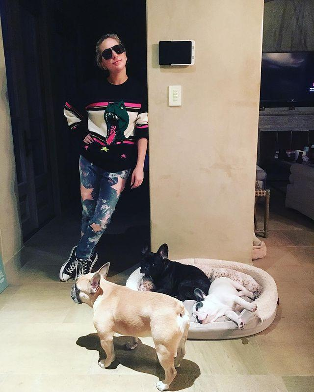 <p>The dogs joined their mom for a casual photo shoot in 2017.</p>