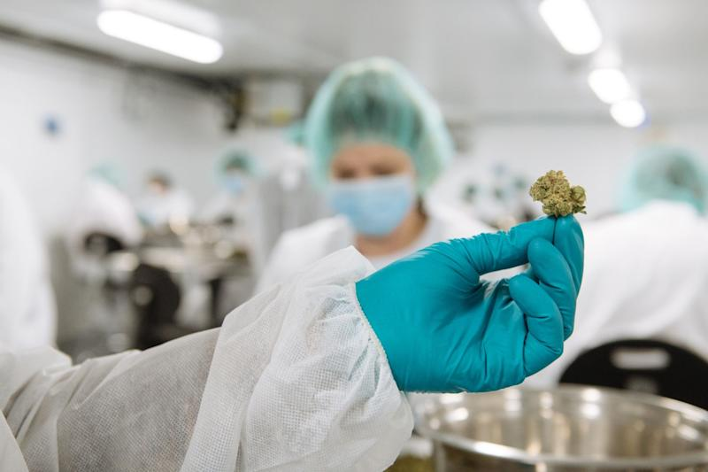 CannTrust (NYSE:CTST) Shares Gap Down to $2.18
