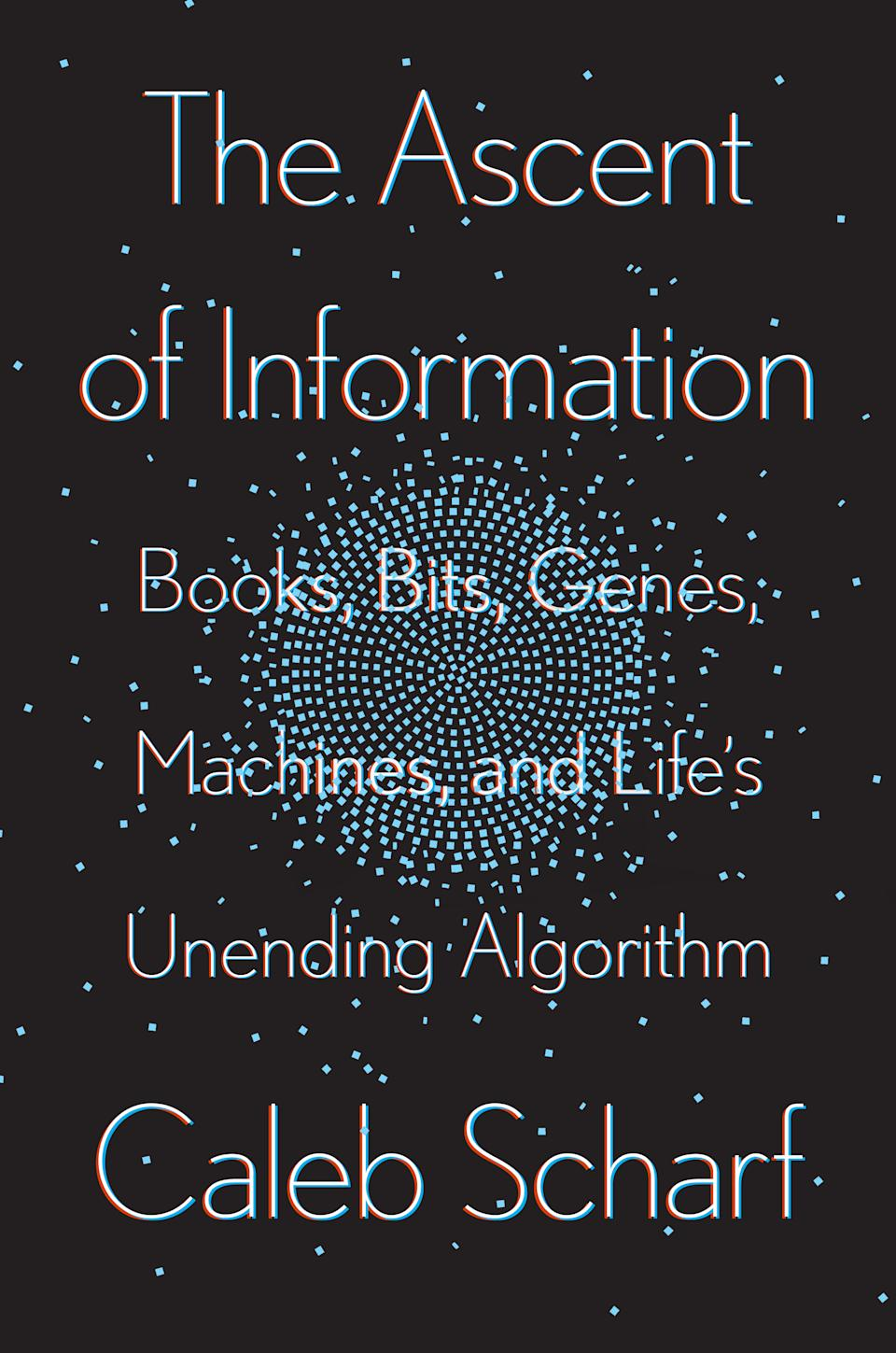 The Ascent of Information cover