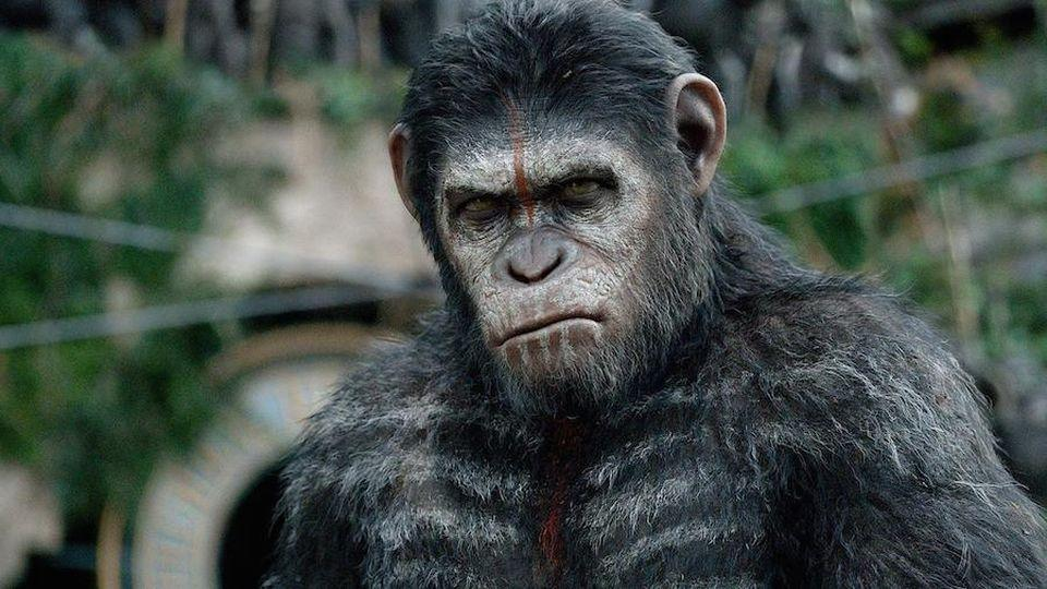 <p> The standout movie of the new Planet of the Apes trilogy. Once again, Andy Serkis delivers a masterful motion-capture performance as Caesar. The movie is full of exhilarating battles with emotional weight, as over a decade of devastation has yet to put an end to the war between man and ape. Dawn of the Planet of the Apes is both the perfect summer blockbuster and a memorable social commentary. </p>